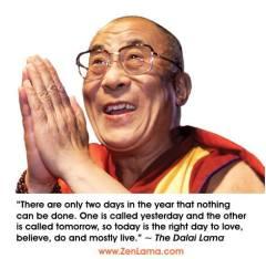 Dalai 7